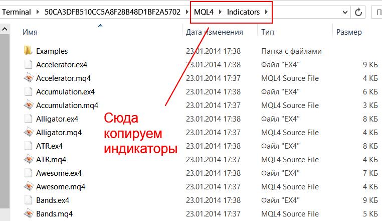Папка для индикаторов в Метатрейдере